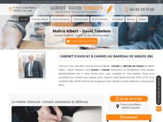 Détails : Me Tobelem, avocat en droit du travail à Cannes