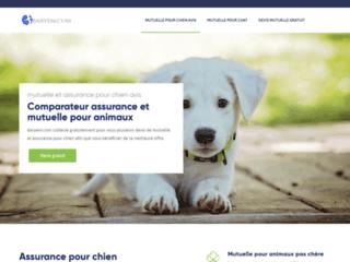 Votre mutuelle d'assurance santé pour chiens