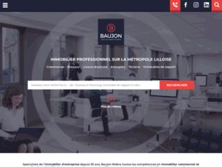 Baujon, immobilier d'entreprise à Lille