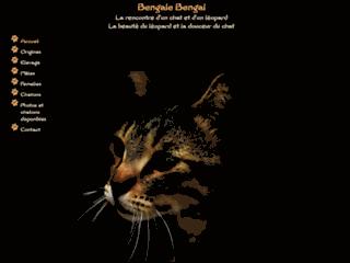 Détails : Bengale Bengal