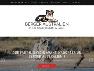 Détails : Tout savoir sur les bergers australiens