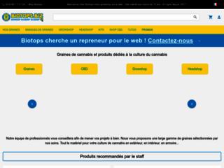 Vente de graines de cannabis légales