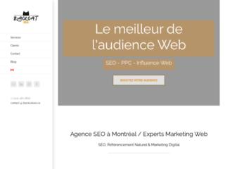 Référencement web - Agence BlackCat SEO Montréal