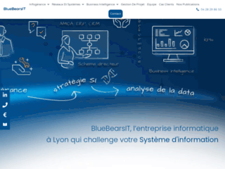 Bluebearsit : entreprise spécialisée en infogérance