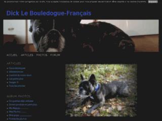 Dick le Bouledogue-Français
