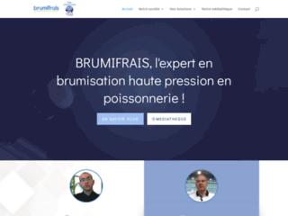 Détails : Brumifrais : Brumisateur poissonnerie