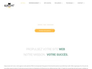 Agence de référencement et marketing digital Catweb