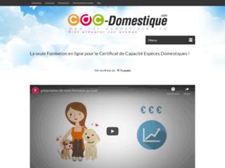 Formation en ligne au certificat de capacité pour animaux domestiques