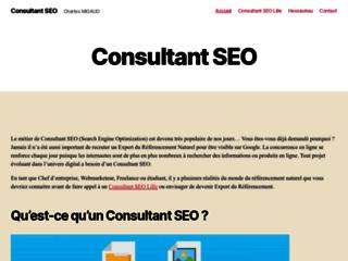 Consultant SEO Lille, Charles Migaud