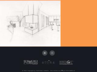 Détails : Création et rénovation de cheminées à bois ou à gaz