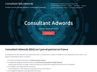 Détails : Consultant Adwords