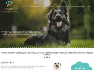 La différence entre le Coach canin et le comportementaliste