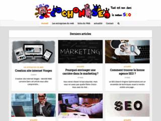 Détails : Agence web référencement