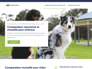 comparateur-mutuelle-chien.xyz