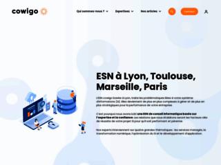 Cowigo - Un regard d'expert sur votre IT