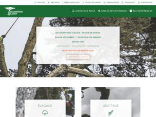elagage dechampsavin expert en abattage d'arbre et dessouchage