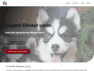 Tout sur la formation en élevage canin