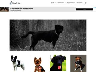 Tout savoir sur les chiens