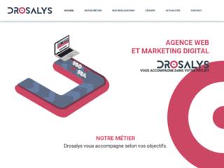 Agence web Drosalys