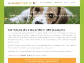 Détails : Une mutuelle chien pour protéger votre compagnon et votre porte monnaie