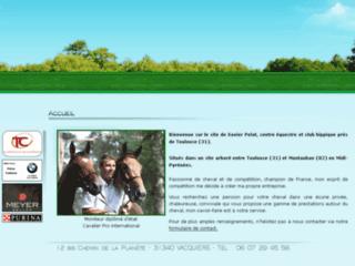 Détails : Xavier Pelat : Vente de chevaux sur la Haute Garonne (31)