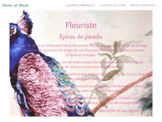 Détails : Fleuriste épines de paradis à Marseille