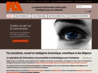 Détails : Fla Consultants : veille concurrentielle et marketing