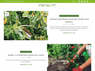 Détails : Florae, vente de fleurs et plantes en ligne