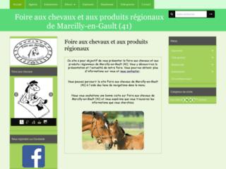 Foire aux chevaux de Marcilly-en-Gault