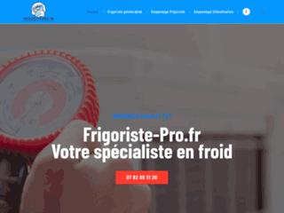 Détails : Frigoriste Pro