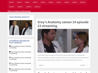Grey's Anatomy version streaming