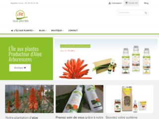 Aloe arborescens avec l'île aux plantes