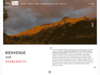 Détails : Agence immobilière dans les Diablerets