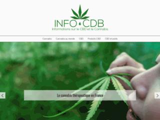 Top des 4 pays producteurs de cannabis dans le monde