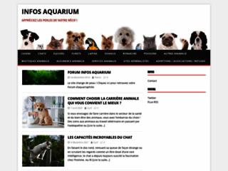 Détails : Aquarium