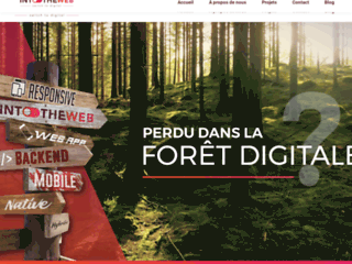 Détails : IntoTheWeb, agence web à Liège