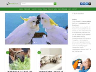 Détails : Vivre de sa passion pour les animaux