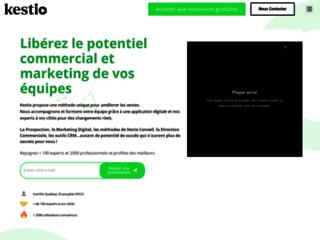 Détails : Stratégies de marketing pour les entreprises