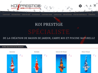 Koi Prestige