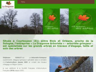 Détails : Arboriste grimpeur Loir et Cher 41, Loiret 45