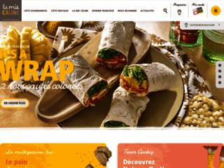 Détails : Franchise saladerie | La Mie Câline