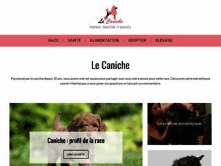 Détails : Lecaniche.fr : tout savoir sur le caniche