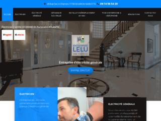 Détails : Installations électriques, Entreprise Lelu (77)