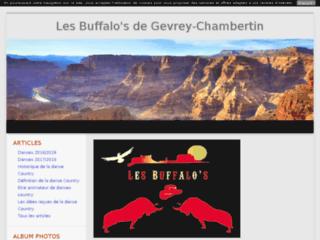Les Buffalo's de Gevrey-Chambertin