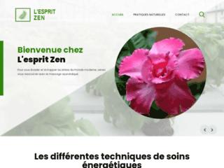 Lesprit-zen.fr : en savoir plus sur l'acupuncture