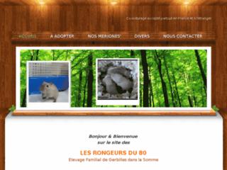 LES RONGEURS DU 80