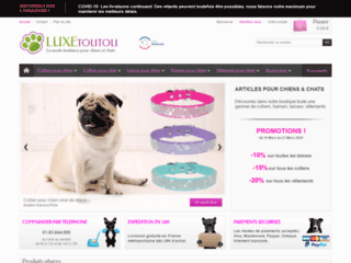 Détails : Collier pour chien