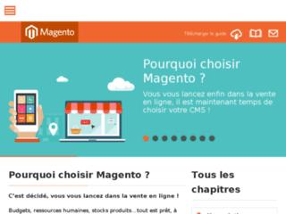 CMS e-commerce-Magento guide