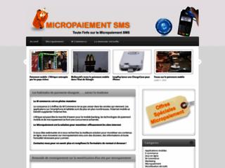 Détails : Le blog du micropaiement webmarketing