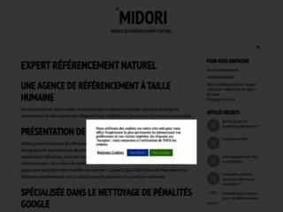 Agence de référencement pas à Paris : midoritech une équipe sympathique.